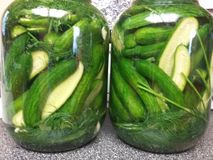 pickle royalty-vrije stock foto's