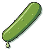 Pickle Royalty Free Stock Images
