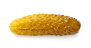 Pickle all'aneto Fotografie Stock