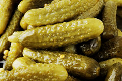 Pickle cucumber Royalty Free Stock Photography