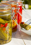 Pickle Delight Royalty Free Stock Photo