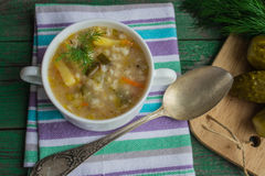 Pickle - Russian soup Stock Images