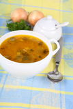 Pickle soup Royalty Free Stock Photos
