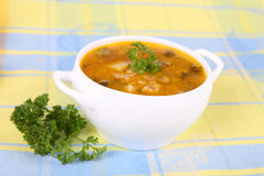 Pickle soup Royalty Free Stock Photo