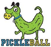 Pickleball Imagens de Stock