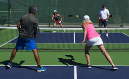 Pickleball - Mixed Doubles Action. Colorful action image of mixed double pickleball players during a game Royalty Free Stock Image