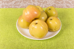 Pickled apples Stock Image