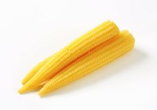 Pickled baby corn Royalty Free Stock Images