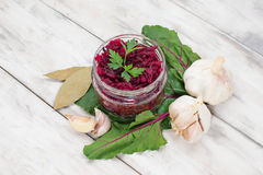 Pickled beet in a jar Royalty Free Stock Photography