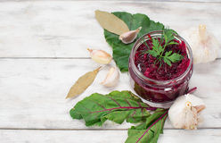 Pickled beet in a jar Stock Images