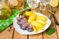 Pickled bismarck herring with onions and potatoes. Served with vodka Royalty Free Stock Image