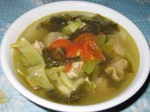 Pickled cabbage soup Stock Image