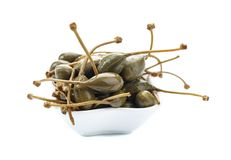 Pickled caper isolated on white background. Capparis pickled flower buds of Capparis spinosa stock photos
