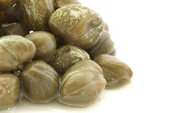 Pickled capers Royalty Free Stock Photo