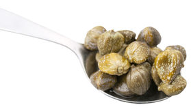 Pickled capers in spoon close up isolated Royalty Free Stock Photography