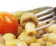 Pickled champignon on fork Royalty Free Stock Photo