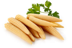 Pickled corns Stock Images