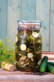 Pickled cucumber Royalty Free Stock Images