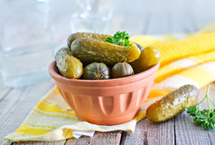 Pickled cucumber Royalty Free Stock Photography