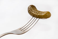 Pickled Cucumber on fork over white background Stock Image