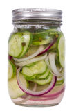 Pickled cucumber and onion Stock Photography