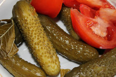 Pickled cucumber and tomato. Pickled vegetables cucumber and tomato background Stock Photography