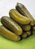 Pickled cucumbers. Royalty Free Stock Photo