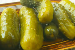 Pickled cucumbers in brine Royalty Free Stock Photography