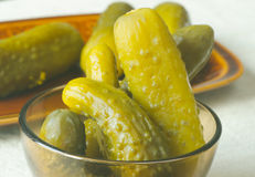 Pickled cucumbers in brine Royalty Free Stock Image