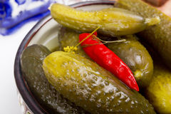 Pickled cucumbers in a clay bowl Stock Image