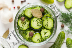 Pickled cucumbers closeup in a jar. Top view. Royalty Free Stock Photo