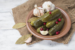 Pickled cucumbers with cranberries. Pickled homemade cucumbers with cranberries Stock Image