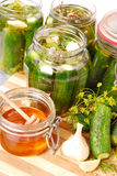 Pickled cucumbers with honey Royalty Free Stock Images