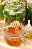 Pickled cucumbers with honey Royalty Free Stock Photos