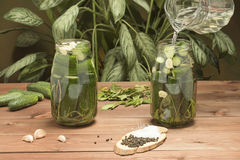 Pickled cucumbers in a jar. Pickled cSalted cucumber in a jar with vegetable ingredients and brineucumbers in a jar Royalty Free Stock Photos