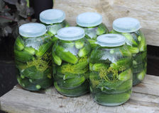 Pickled cucumbers in pots. Six glass pots with pickled cucumbers on a garden bench Stock Images