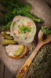 Pickled cucumbers soup Stock Images