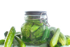 Pickled cucumbers with spices in glass jar Stock Photos
