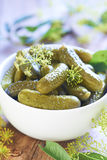 Pickled cucumbers in white bowl Stock Photo