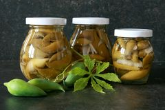 Pickled Cyclanthera Pedata Royalty Free Stock Photos