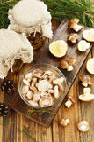 Pickled and fresh mushrooms Stock Image