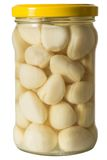 Pickled Garlic In A Jar Of White Marjoram Royalty Free Stock Images