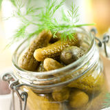 Pickled gherkin Royalty Free Stock Photography