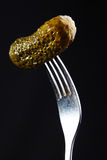 Pickled gherkin on fork Royalty Free Stock Photos