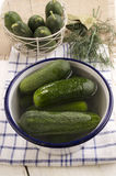 Pickled gherkins with saltwater in a bowl. Pickled gherkins with saltwater in a blue and white enamel bowl Royalty Free Stock Photos