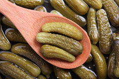 Pickled gherkins in a wooden spoon. On pickled gherkins background. Close-up Royalty Free Stock Image