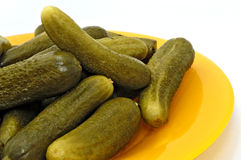 Pickled gherkins (young cucumbers) Royalty Free Stock Photography