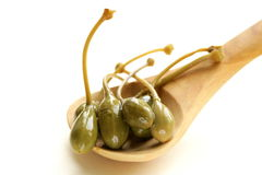 Pickled gourmet green capers Royalty Free Stock Photos