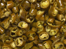 Pickled green chilies Stock Image
