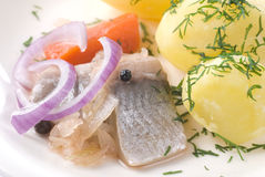Pickled Herring. With new potato and onion Royalty Free Stock Photo